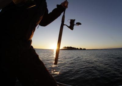 Auringon laskiessa on usein kalat aktiivisia.